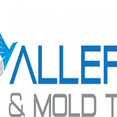 Air Allergen and Mold Testing Inc.