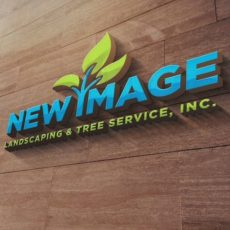 New Image Corp