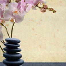 Integrated Wellness