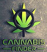 Cannabis SEO Marketing Colorado Spring / Denver