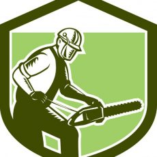 Bethel Tree Service & Removal Co