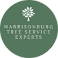 Harrisonburg Tree Service Experts