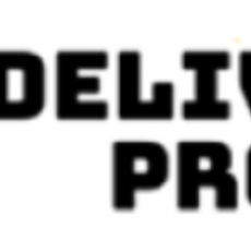 DELIVERY PROS INC