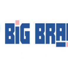 Big Brain Escape
