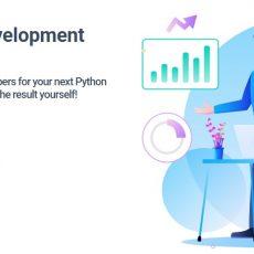 Best Python Web Development Services in USA - Hire Python Developer