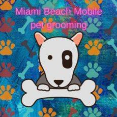 Miami Beach Mobile Dog Grooming